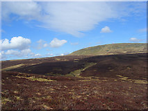 NY8022 : Moorland below Mickle Fell by Andrew Smith