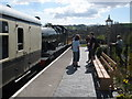 SX8061 : Arrival from Buckfastleigh by Roger Cornfoot