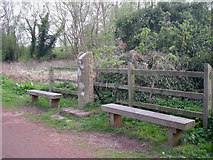 SO8581 : County boundary by Row17