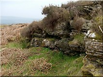 NS3778 : Cornstone outcrop by Lairich Rig
