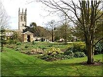 SP5206 : Oxford Botanical Garden by Bryan Pready