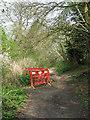TG0922 : Erosion on path by Evelyn Simak