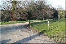 S9725 : Track near Carrigmannon Bridge by Graham Horn