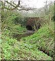 TG0821 : Bridge over stream by Evelyn Simak