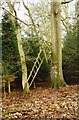 SU4672 : Dilapidated Hunter's High Seat - Bussock Wood by Standish