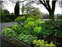 TQ3473 : Grounds of Horniman Museum by Chris Gunns
