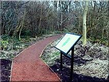 SO9596 : Peascroft Wood by Gordon Griffiths