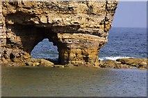 NZ4064 : Arch in Marsden Rock by Steve Daniels