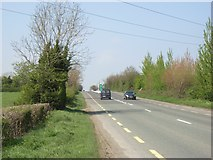 N9769 : N2 at Rathdrinagh, Co. Meath by JP