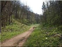 SE2968 : Ripon Rowel Walk by Derek Harper