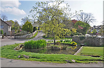 SS9674 : The village pond - Llysworney by Mick Lobb