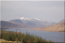 NH1804 : Forestry above Loch Loyne by Roger Davies