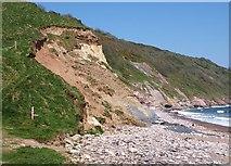 SX9253 : Cliff, Man Sands by Derek Harper