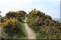 SX1497 : St Gennys: towards Castle Point by Martin Bodman