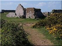 SX9456 : Southern Fort, Berry Head by Derek Harper
