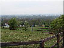 NZ5315 : Pasture land, Hambleton Hill by Stephen McCulloch