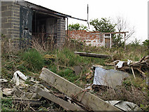 NZ5315 : Abandoned sheds near Hambleton Hill by Stephen McCulloch