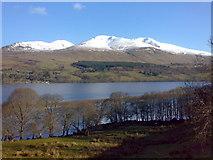 NN6135 : Loch Tay, Ben Ghlas & Ben Lawers from Cloichran, South Loch Tayside by Donna MacKenzie