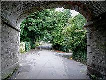 SJ9922 : Underneath the arches, across the little bridge ... by Roger  Kidd