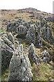 NR6880 : Rubha na Cille by Anne Burgess