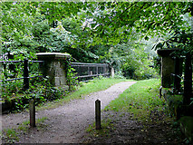 SJ9922 : Footbridge cross the Trent and Mersey Canal at Great Haywood, Staffordshire by Roger  Kidd