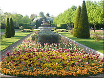 TQ2882 : Flower beds and fountain in the Italianate garden in Regent's Park by pam fray