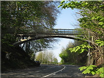 TQ2652 : Bridge carrying public footpath over A217 (Reigate Hill) by Richard Rogerson