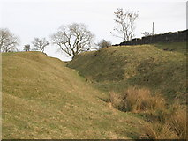 NY9569 : The north defensive ditch of Hadrian's Wall east of Greenfield Farm (2) by Mike Quinn