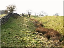 NY9569 : The north defensive ditch of Hadrian's Wall west of Milecastle 24 (2) by Mike Quinn