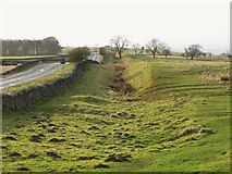 NY9569 : The north defensive ditch of Hadrian's Wall west of Milecastle 24 (3) by Mike Quinn