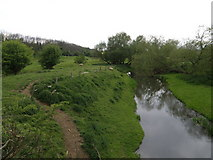 SP9599 : River Welland looking upstream by Michael Trolove