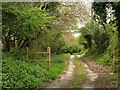 SW7844 : Track to Polstein Farm by Derek Harper