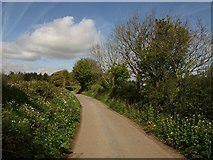 SX7883 : Lane near Blackingstone Farm by Derek Harper
