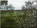 NS7962 : View to Budshaw Farm by Jim Smillie
