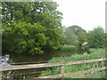 SJ6240 : Moated farm near Middle Morrey Farm by John M