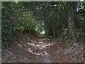 SU9298 : Toby's Lane by Balraj Gill