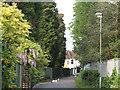 TQ4274 : Edith Nesbit Walk, Eltham by Stephen Craven