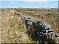 NS2886 : Dry-stone wall and fence by Lairich Rig