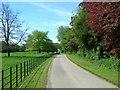 TA0155 : Track to Sunderlandwick Hall by JThomas