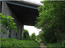 TQ5567 : Darent Valley Path under M20 Motorway by David Anstiss