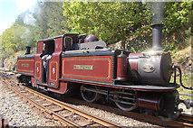 SH6441 : Merddin Emrys leaves Tan-y-Bwlch by John Firth