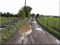 H2111 : Puddly farm road near Newton Gore by Oliver Dixon