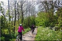 SK1751 : Tissington Trail, south of Tissington by Trevor Harris