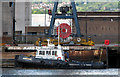 J3576 : Tug 'Michael Francis' at Belfast by Rossographer