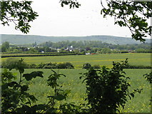 TQ3616 : Country scene in the Low Weald by Dave Spicer