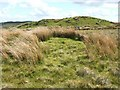 NS4779 : Grass-covered remains of an ancient cairn by Lairich Rig
