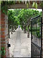 ST8905 : Walled garden, Old Rectory by John Palmer