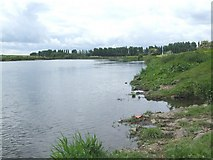 SK6443 : An angler's view of the Trent by johnfromnotts