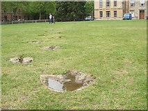 SP5106 : Dinosaur footprints by Stephen Craven