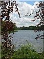SE7071 : Castle Howard, Great Lake by Gordon Hatton